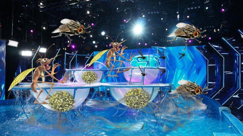 ¿Aquadance o Parque Norte?:  no dejan entrar a los participantes con cremas y maquillaje en las palanganas; falta que haya dengue