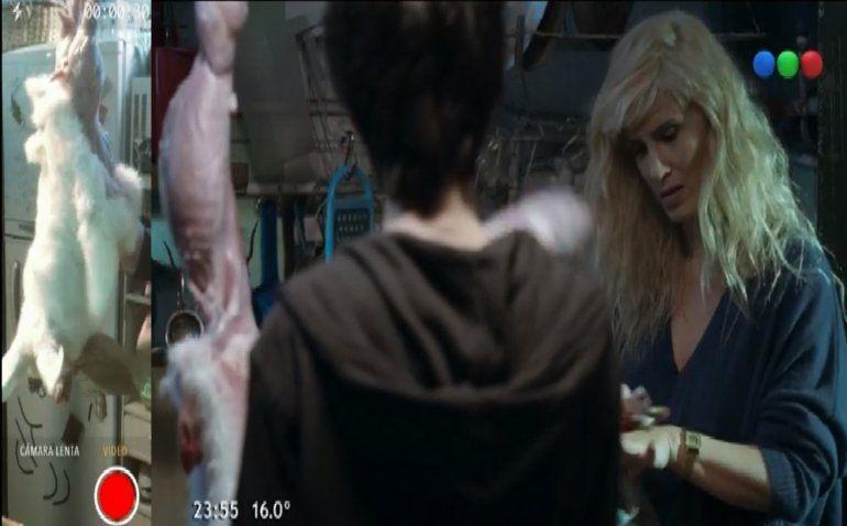 Las redes enfurecidas por una escena con Griselda Siciliani despellejando a un conejo en Morir de amor