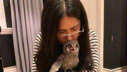 ¡Exótica! Salma Hayek y su particular mascota