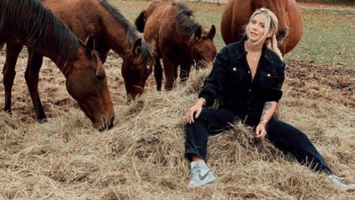 Wanda Nara fue a ver sus caballos con un mono que sale 2800 euros