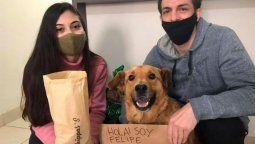 Felipe, el perro callejero, que vende chipá para pagar su tratamiento.