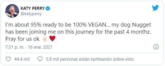 Katy Perry usó sus redes sociales para informar que tanto ella como su perro se volverían veganos