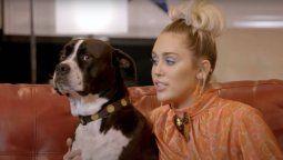 ¡Qué tristeza! Miley Cyrus sufrió la muerte de su perrita