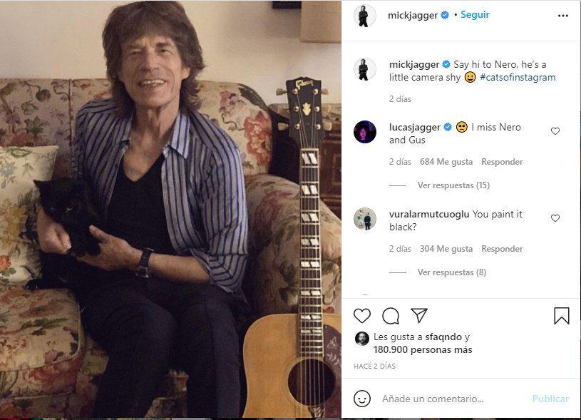 Esta es la foto que Mick Jagger compartió junto a su gato