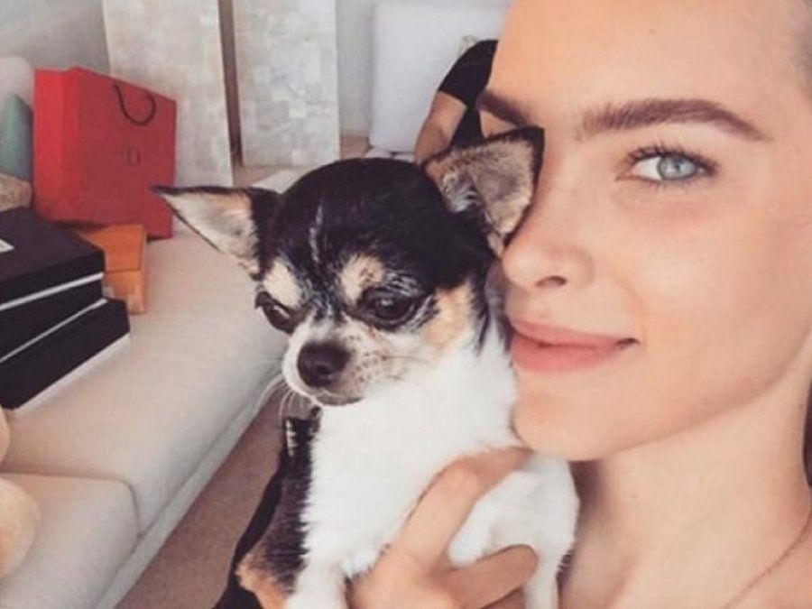 ¡De luto! Belinda sufre la muerte de su perrito
