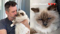 José María Listorti triste por la muerte de su gato