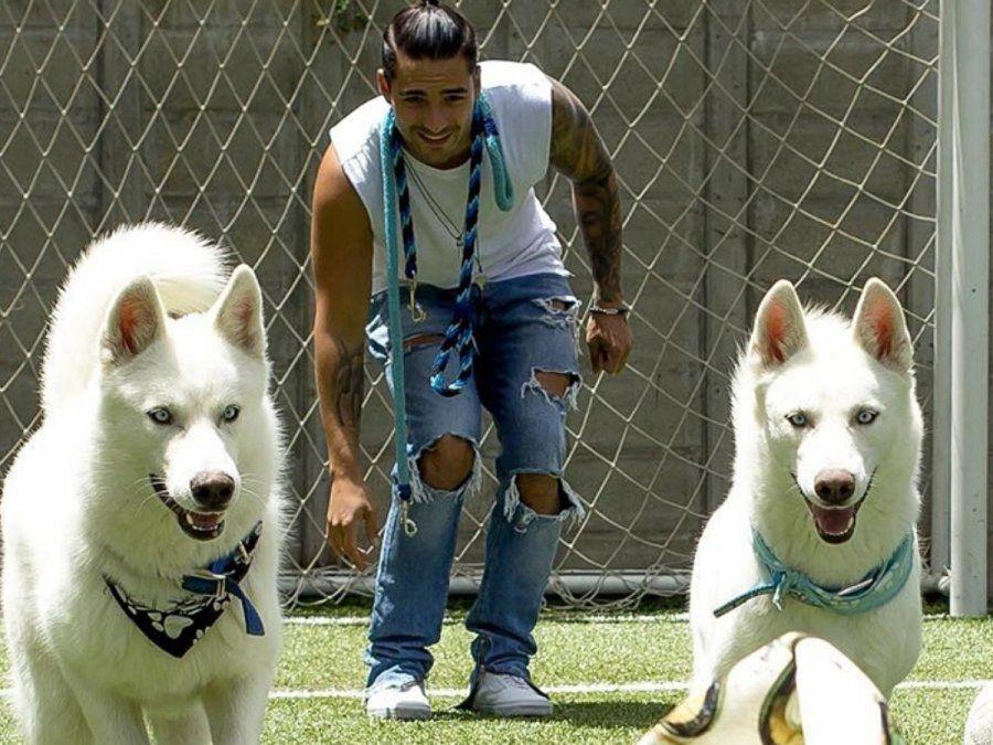 ¡Amor puro! Maluma derrite a sus seguidores con sus mascotas