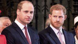 Demandan al Príncipe Harry y a su hermano por supuesto fraude con fondos de caridad